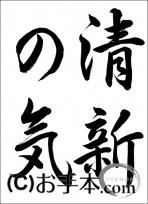 半紙毛筆『清新の気(行書)』